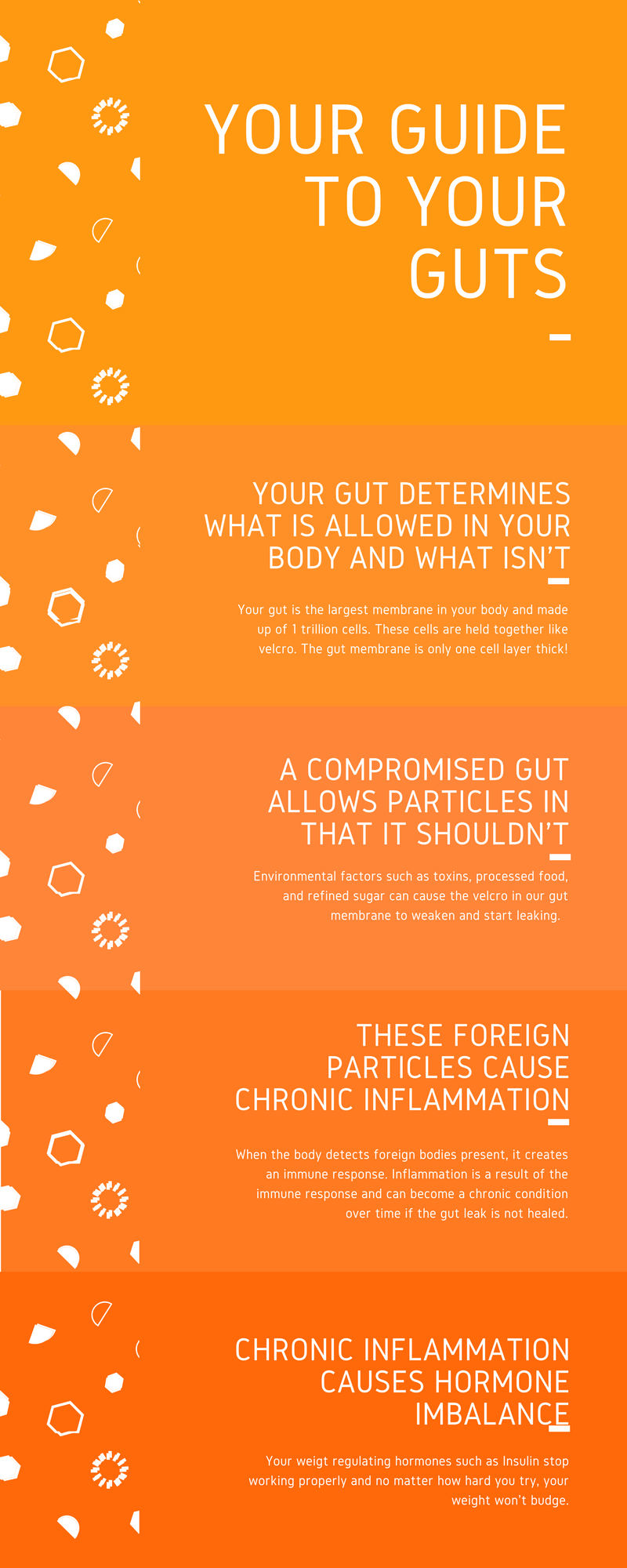 Copy of Your guide to gut health